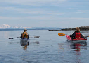 Discovery Island Kayaking Tours