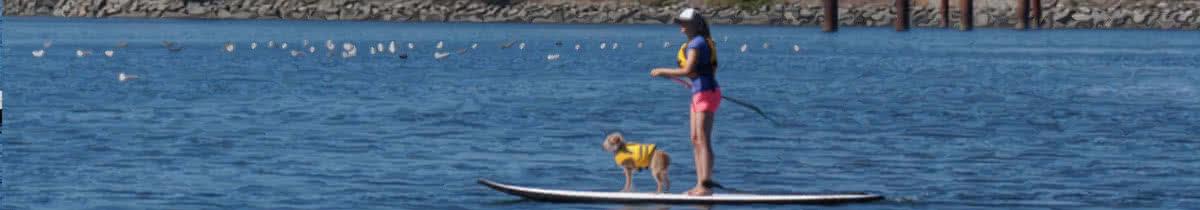 Top Quality Paddlebaords and Kayaks