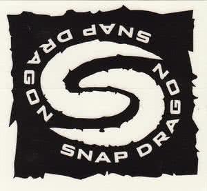 snap-dragon-spray-skirt