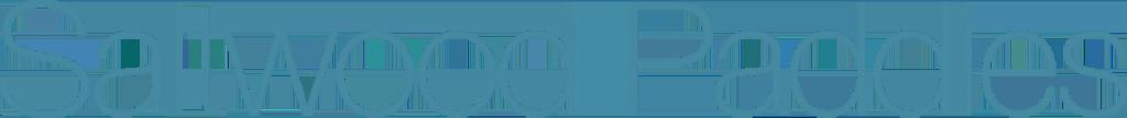 saltwood paddles logo