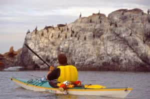 Kayaking to Race Rocks