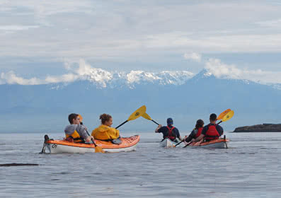 Oak Bay Shoreline Kayak Tour