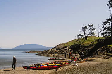 Saturna Island Kayak Tour