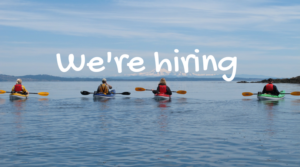 ocean-river-jobs