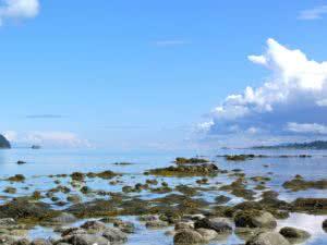 kinder-morgan-expansion-effects-on-salish-sea