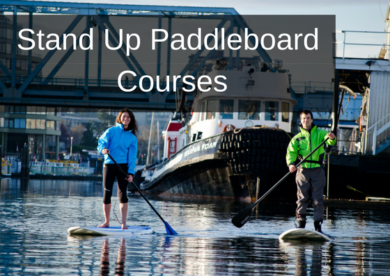 Stand Up Paddle boarding Courses