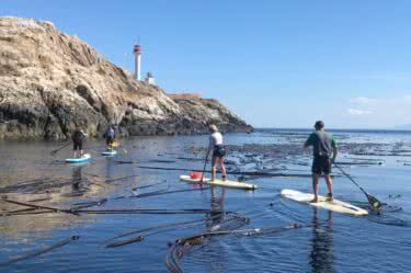 More about 2019 Saturna Island SUP Fest