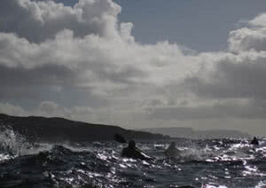 Sea Kayak Leader Assessment (British Canoeing) @ Victoria - Oak Bay